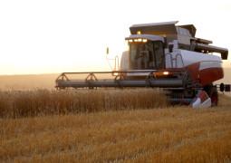 Сельскохозяйственное производство